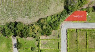 Lote Flandes – Tolima
